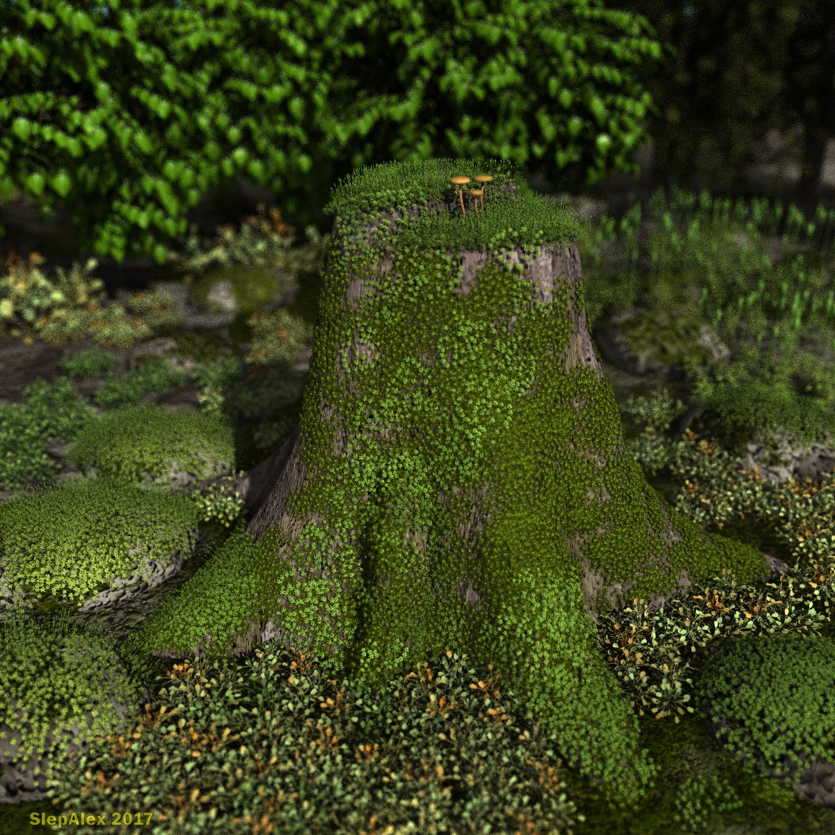 Stump covered with moss