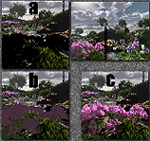 Rhododendron Render Examples