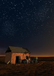 Starry night in the steppe