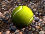 A tennis ball on some wet pebbles